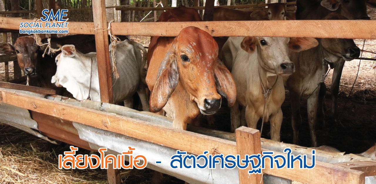 Young Smart Farm ปั้นเยาวชนเกษตร 4.0