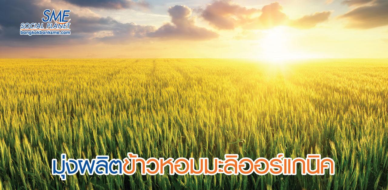 กัมพูชารุกขยายตลาดส่งออกข้าว