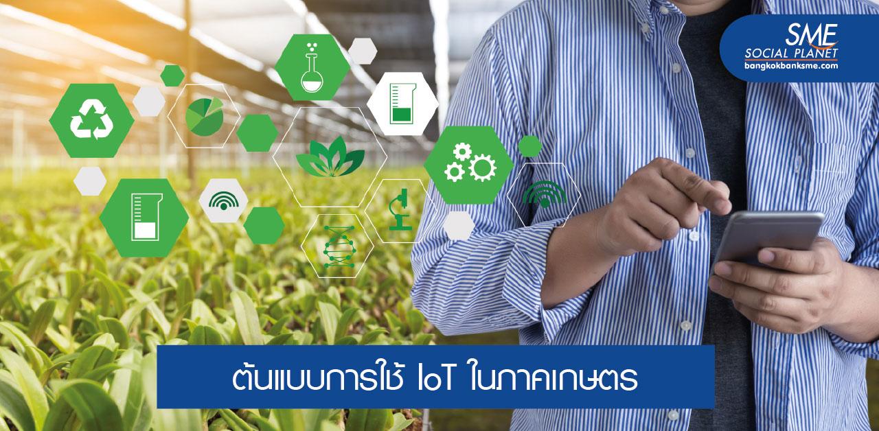 5 กรณีการใช้ IoT เพื่อการทำเกษตรอัจฉริยะ