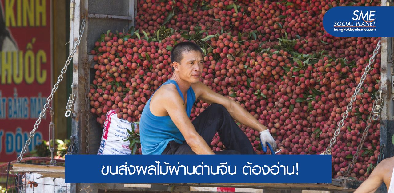 ดูกันชัดๆ เงื่อนไขใหม่ นำเข้าและส่งออกผลไม้ไทย-จีน