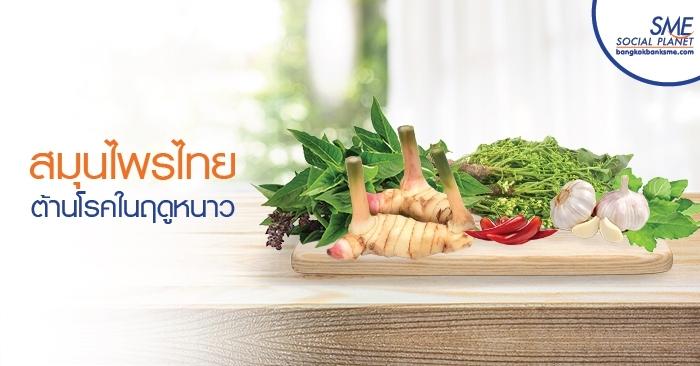 สมุนไพรไทยต้านโรคในฤดูหนาว