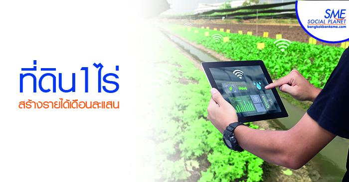 """ฟาร์มมิ่ง สู่ """"สมาร์ทฟาร์มมิ่ง""""ทางเลือกใหม่ภาคเกษตรไทย"""