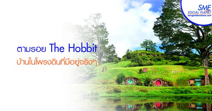 เที่ยวหมู่บ้าน Hobbiton มิดเดิลเอิร์ธของจริง ณ นิวซีแลนด์