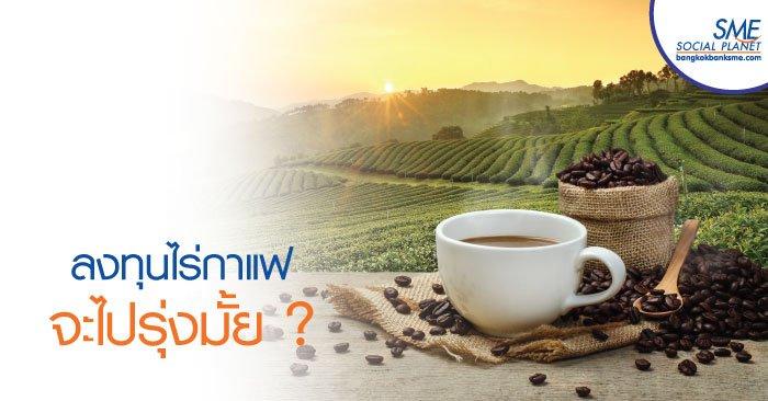 ผลิตกาแฟคุณภาพ ธุรกิจเด่นน่าลงทุน